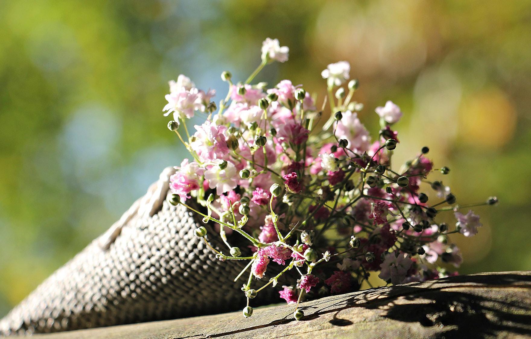 卒業式にぴったりな花言葉を持つお花「かすみ草」